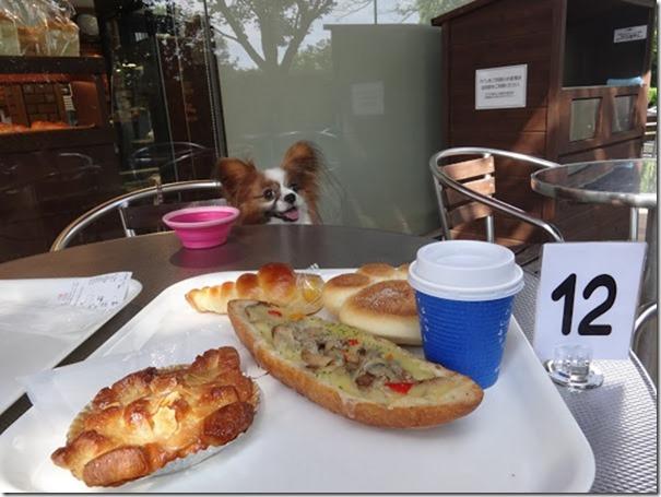 神奈川県横浜市あざみ野のパン屋さんベルベの菓子パンと我が家の愛犬パピヨンのアリア
