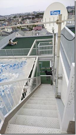 ドッグデプト湘南江の島店のドッグランの階段を上ったところ