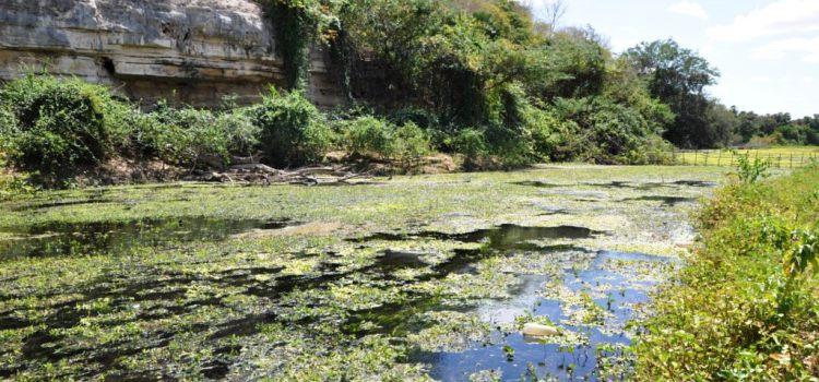 As enchentes do Rio Mossoró em folheto de cordel