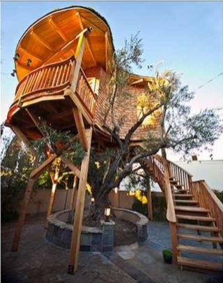 Awesome Treehouse Masters Design Ideas 17