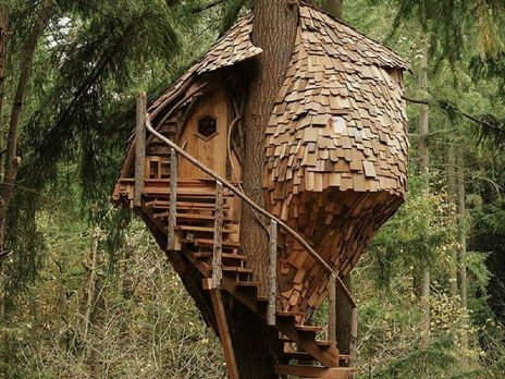 Awesome Treehouse Masters Design Ideas 47