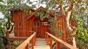 Awesome Treehouse Masters Design Ideas 53