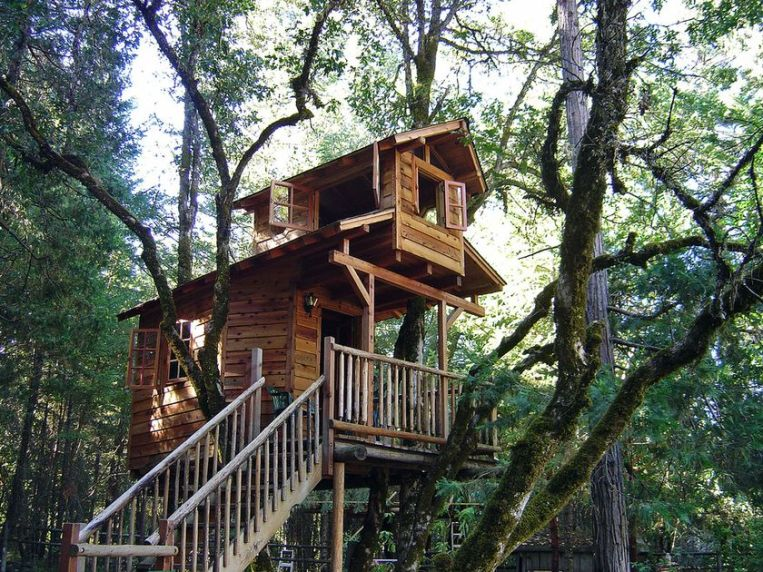 Awesome Treehouse Masters Design Ideas 61