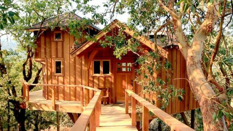 Awesome Treehouse Masters Design Ideas 76