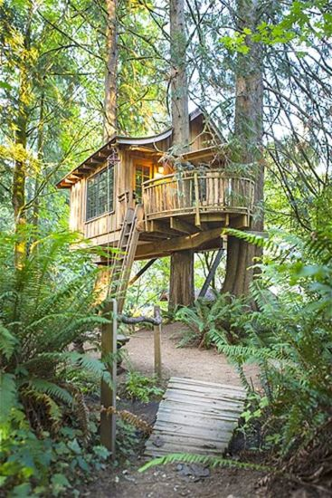 Awesome Treehouse Masters Design Ideas 80