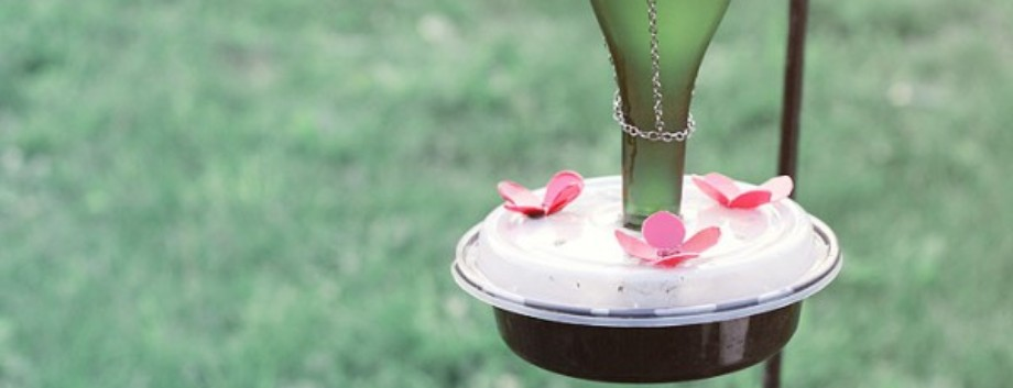 DIY Hummingbird Feeder Ideas Featured