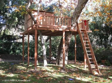 Simple Diy Treehouse For Kids Play 60