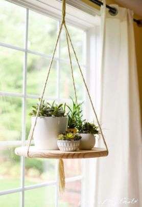Stunning Diy Succulents For Indoor Decorations 33
