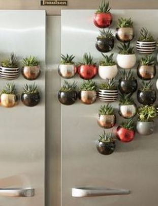 Stunning Diy Succulents For Indoor Decorations 35