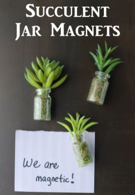Stunning Diy Succulents For Indoor Decorations 37
