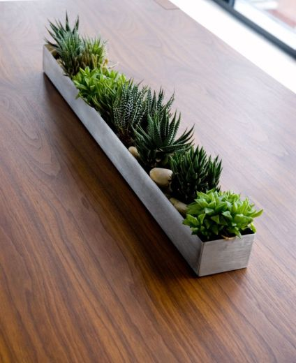 Stunning Diy Succulents For Indoor Decorations 47