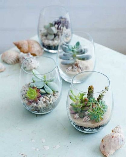 Stunning Diy Succulents For Indoor Decorations 48