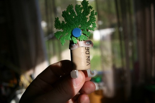 Upcycled tyke # 1 : The bush queen