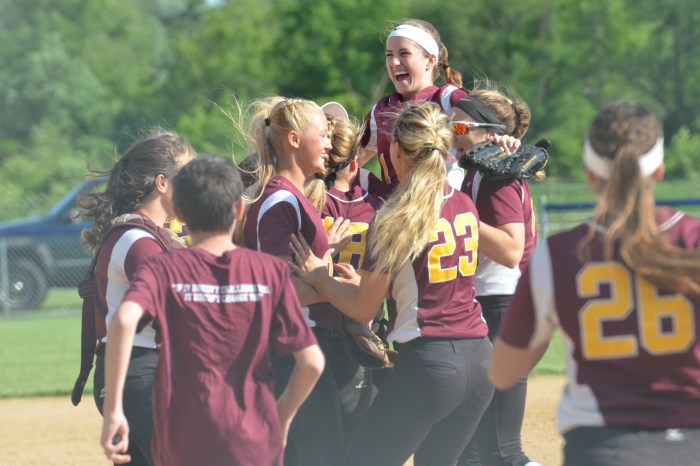 Butler twirls a gem to lead Avon Grove over Perkiomen Valley for District 1-6A title