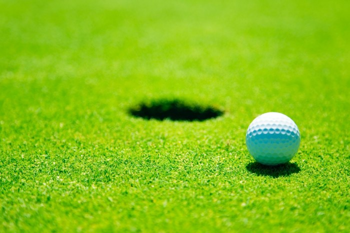 Mercury-Area Boys Golf Roundup: Pochet, Spring-Ford too much for Norristown