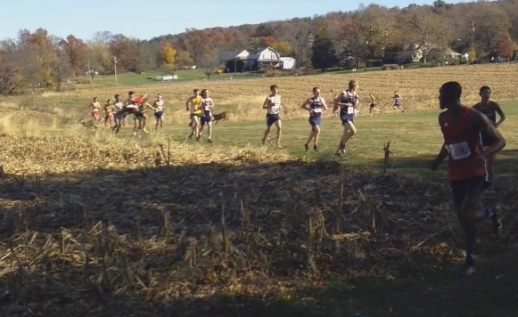 Oh, Deer! Spring-Ford grad hit by deer during race, still finishes