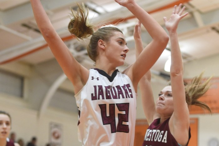 Garnet Valley's Borcky hopes lessons at home keep paying off