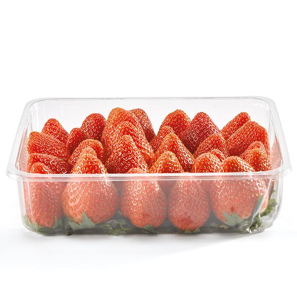 fresa--tarrina-500g