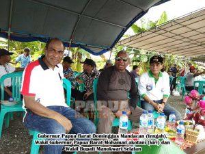 Gubernur Minta Pemkab Mansel Seriusi Perkebunan Jagung