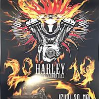 Harley Custom Carnon Bike 2019 – Carnon (34)