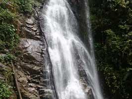 Cascada Paquisha