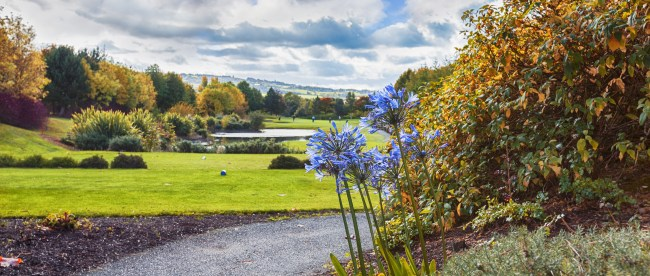 Top 5 Must Play Golf Courses in Northern Ireland