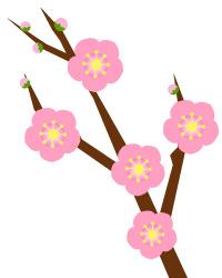梅の花(JEPG)