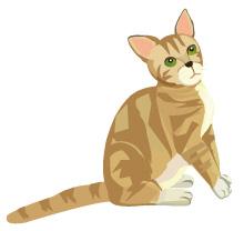 猫のイラスト(JPEG)