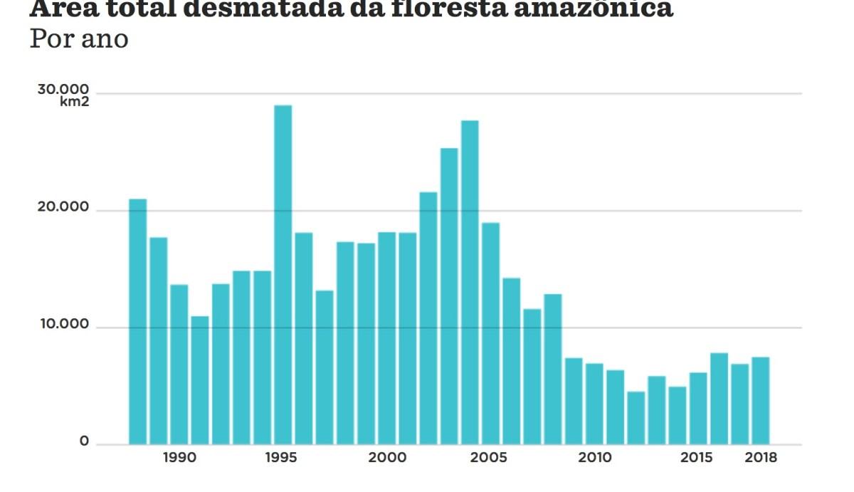 Bolsonaro, Macron und der Amazonas Regenwald
