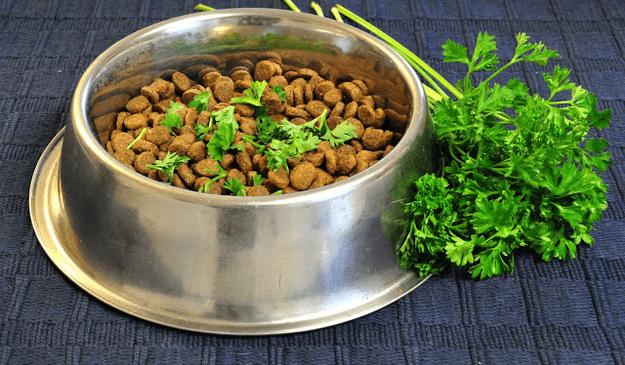 perejil fresco en la comida de tu perro