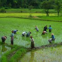 De Bagan a Kalaw: adentrándonos en el estado de Shan