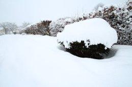 winter-17-4l