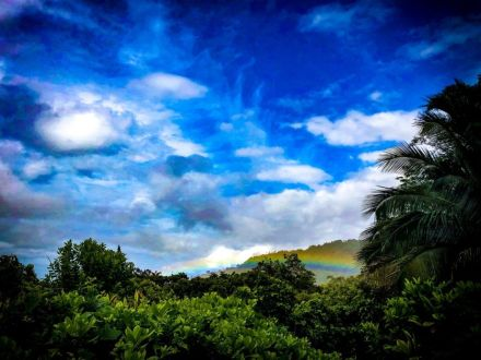 Rainbow Oahu Hawaii