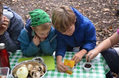 Wild Child Half Term Club Mushrooms