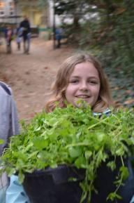 Wild Child Half Term Club Plants