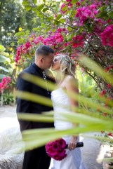 Tropical Weddings - Paradise Gardens