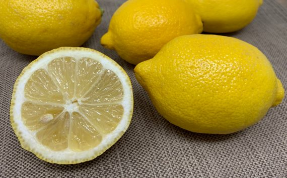 Common Lemon