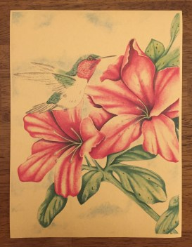 """8.5""""x11"""" (First time colored ink allowed in Pelican Bay since opening in 1989)"""