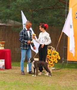 Euphoria BEST MINOR PUPPY on Centraleuropean Boxer Show, Poland 2017