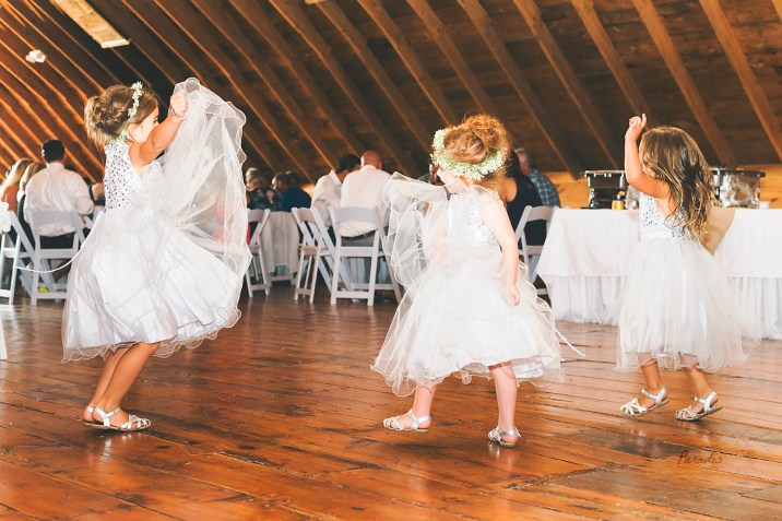 paradis photography maine wedding photographer reception dancing