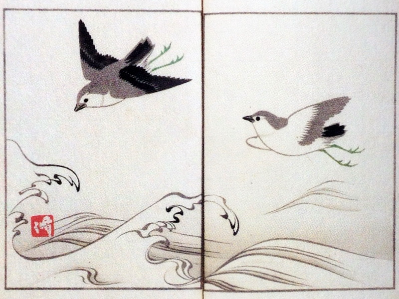 中野其玉 Nakano Kigyoku 其玉画譜 18 波に千鳥 Book of pictures 16 Chidori (Plovers) with waves