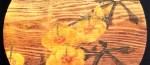 黄蜀葵(トロロアオイ) Abelmoschus manihot