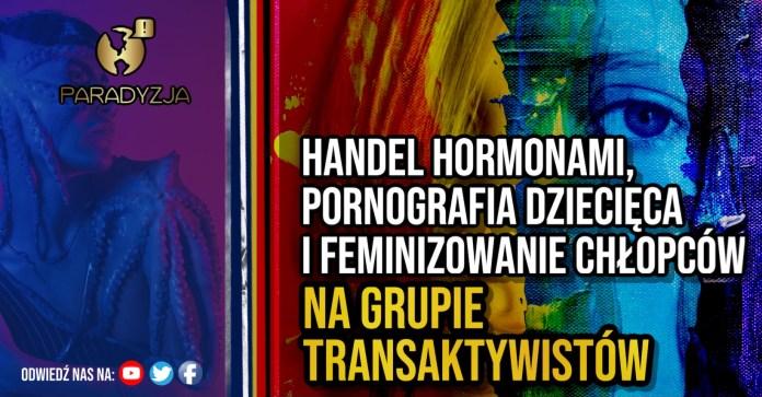 Handel hormonami, pornografia dziecięca i feminizowanie chłopców na grupie transaktywistów