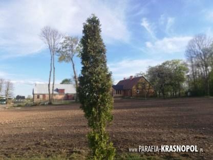 Ogrody Watykańskie w Krasnopolu 061