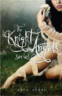capa do livro The knight angels