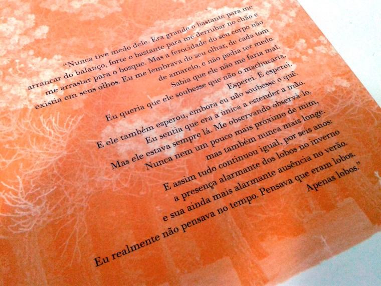 (7) exemplo de quarta capa com quote de personagem. Calafrio de Maggie Stiefvater.