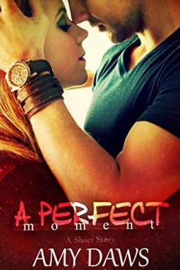 a perfect moment - amy daws