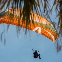 Paragliding_Albania_9th_FAI_parachute_tree