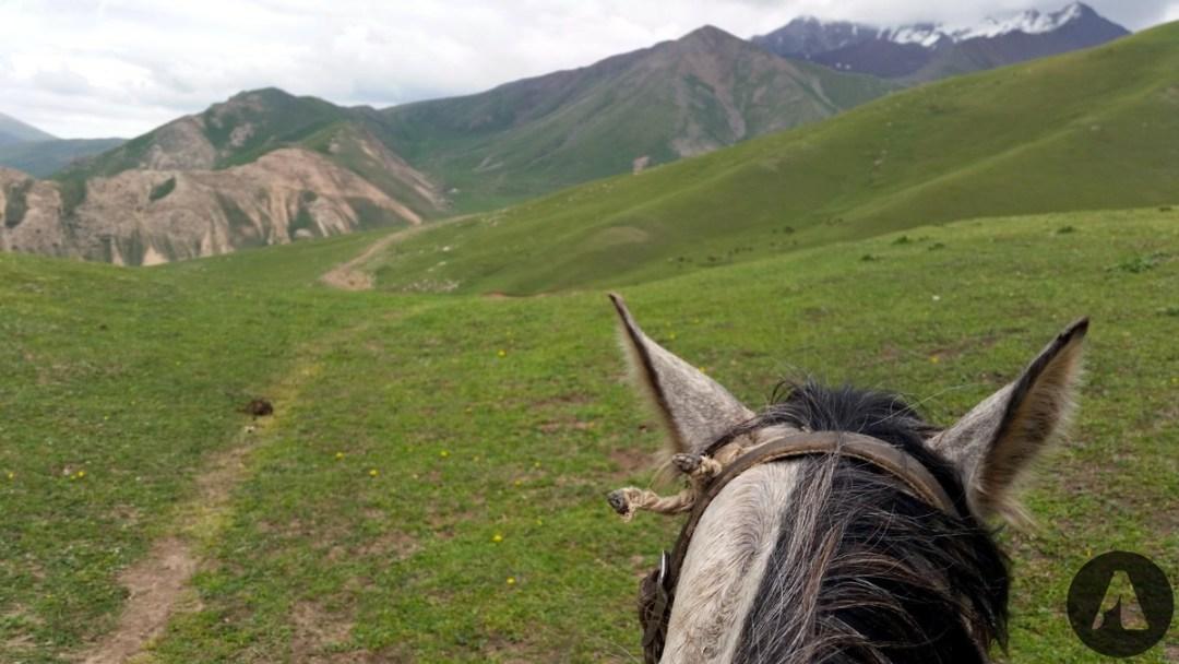 loszad kyrgyzstan