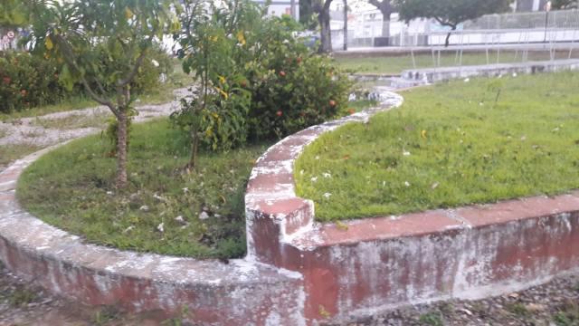 Sem manutenção da PMJP, praças da Torre têm bancos quebrados e excesso de mato